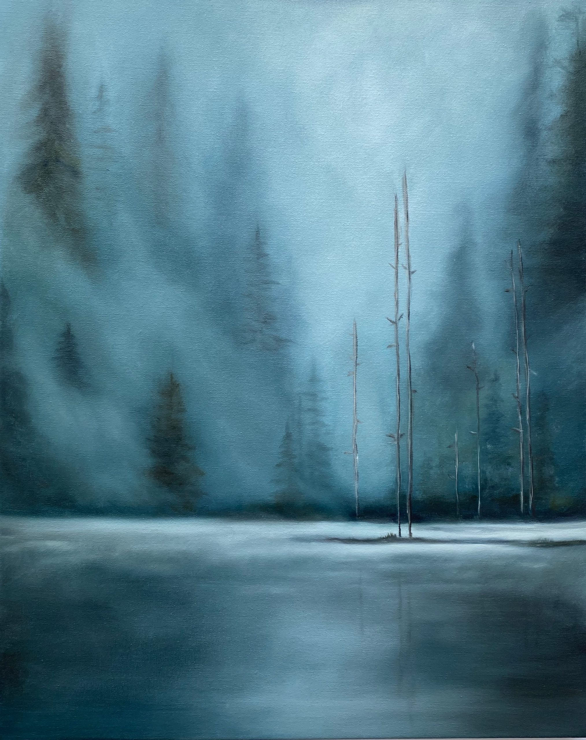 Misty Forest  24 x 30